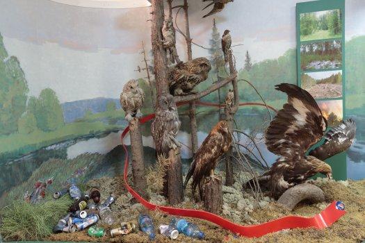 Экологический праздник «Международный день птиц» 30 марта – 2 апреля 2021